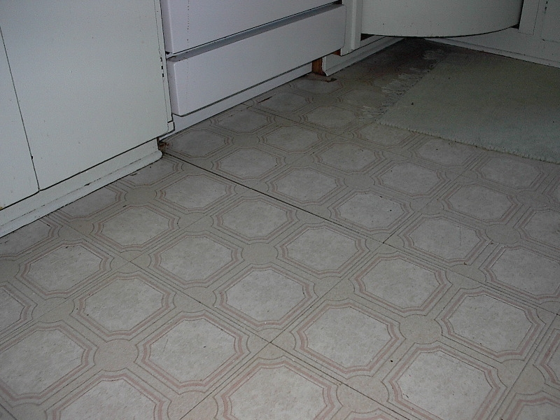 Linoleum flooring update 28 images linoleum hardwood for Can you paint over linoleum floors